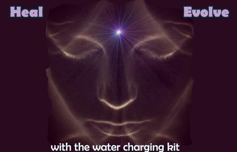 Heal and Evolve Consciousness